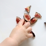 picky baby eating figs