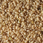 brown rice arsenic contamination