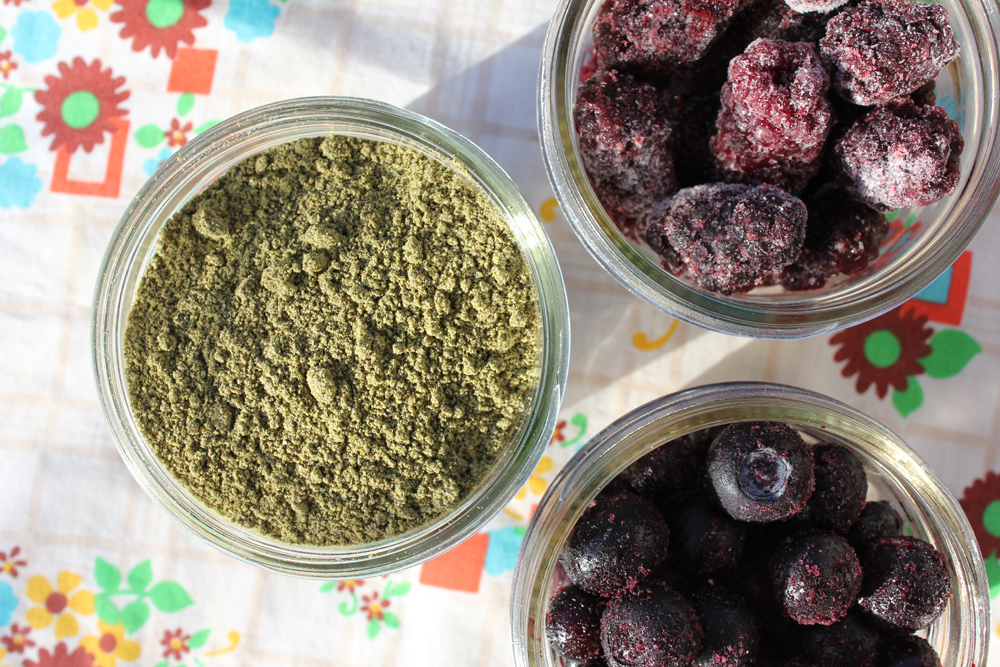 hemp protein powder with blueberries and blackberries