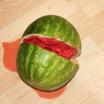 watermelon broken on floor