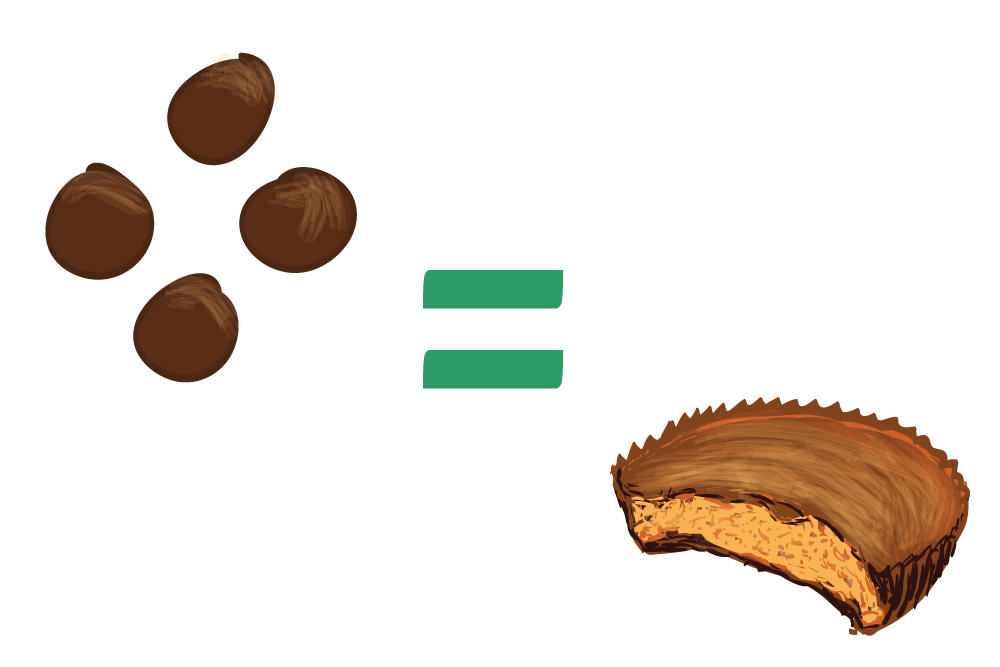 sugar in chocolate covered peanut butter balls compared to Reese's peanut butter cup