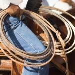 cowboy rodeo rope wrangle health insurance